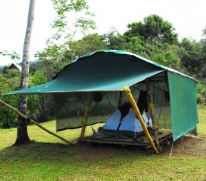 Roughing it in a Rainforest & Mission u2013 Viva La Raw Project | Viva La Raw