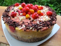 Wild Tropical Fruit Torte