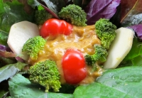 Soup in Salad, chunky cheese-tomato soup - Version 2.jpg