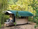 Bamboo/Cob Cabina.jpg