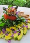 Tomato terrine salad, sunnie pate